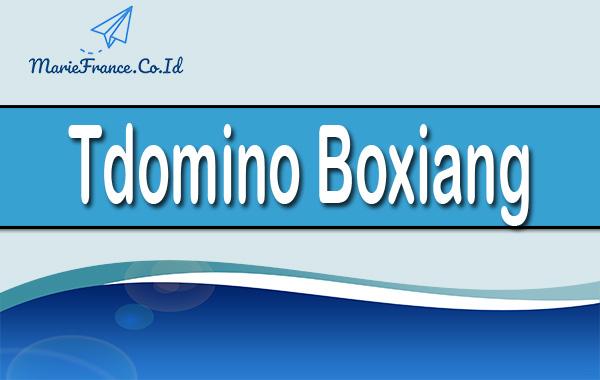 Tdomino Boxiang