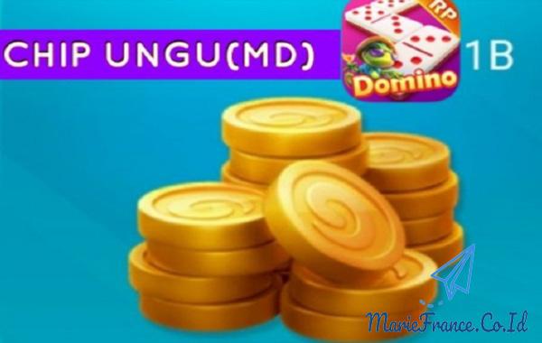 Tips Untuk Membeli Chip Ungu